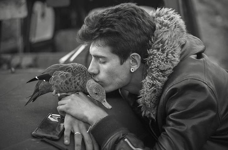Photo of Férfiak és madarak csodálatos találkozása – 4. rész